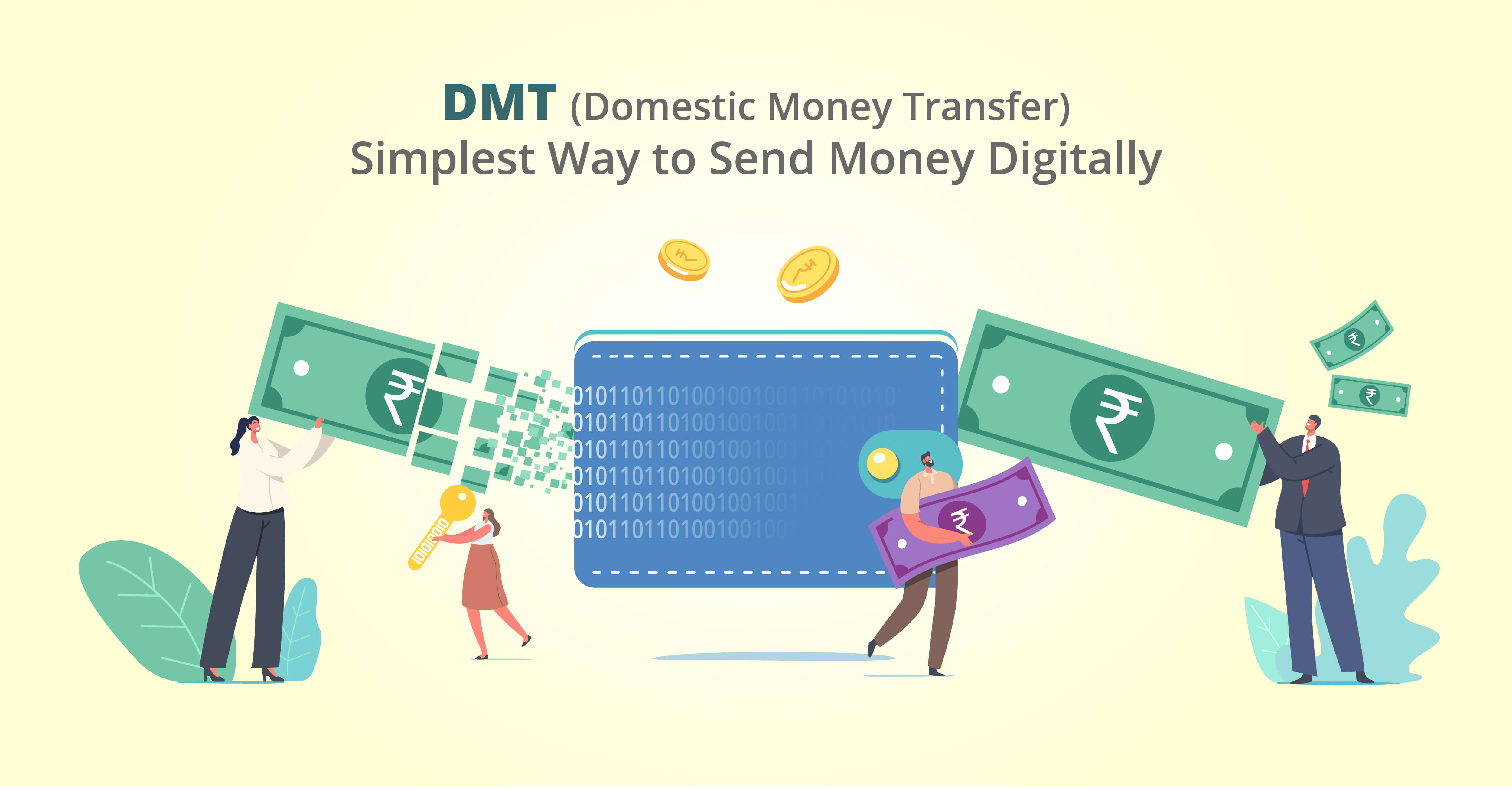 dmt (domestic money transfer) api provider company